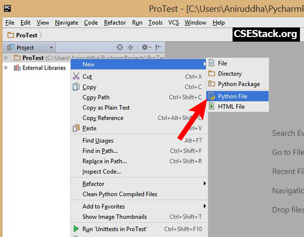 Create python file in project
